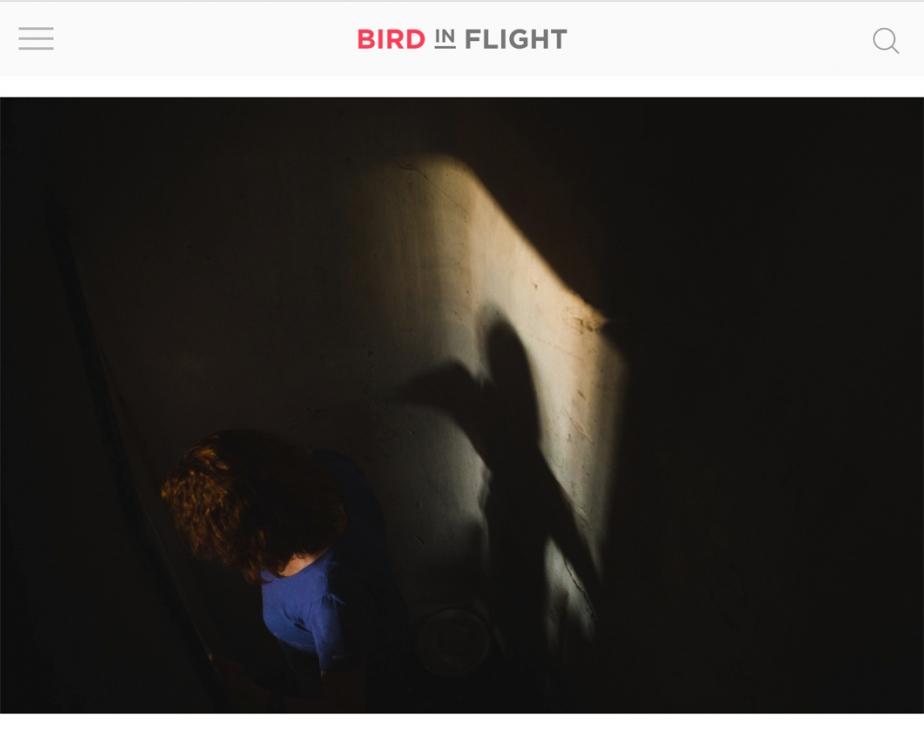 http://rezvaya.com/files/gimgs/th-11_2019_05_Bird_in_Flight_1_v2.jpg